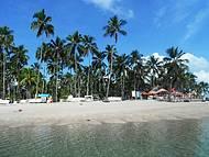 Praia dos Carneiros - Em frente ao Bora Bora