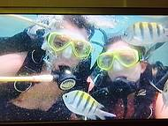 Mergulho nas piscinas naturais