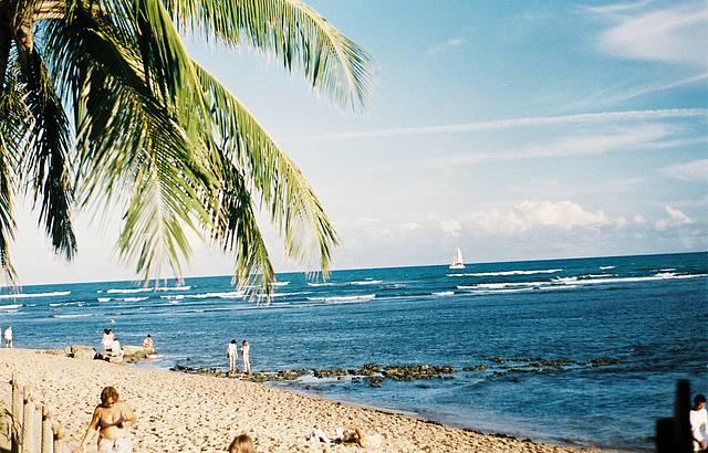 Piscinas naturais da Praia do Forte