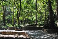 Trilha dentro do parque do Itiquira