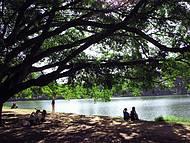 Lugar perfeito para relaxar
