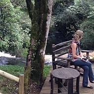 Tour leva ao topo da cachoeira