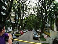 A Rua Mais Bonita do Mundo