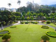 A vista do jardim.