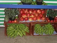 Outras Frutas Também Marcam Presença