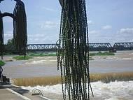 As belas duchas do rio S�o Francisco.