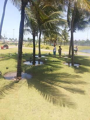 Lagoa, pista de cooper