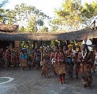 Indígenas e Seus Costumes