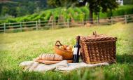 Cenários das vinícolas são encantadores