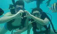 Mergulho nas piscinas naturais de Maragogi