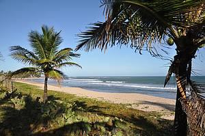 Praia de Guarajuba: Tranquilidade de sobra em meio aos coqueirais -