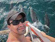 Os golfinhos de Noronha são fascinantes!