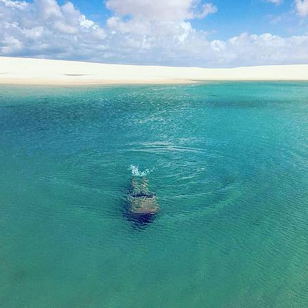Lagoa Tropical - Mergulho perfeito!