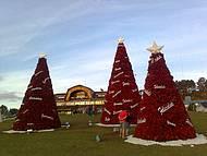 Enfeites de Natal com materiais reciclados.