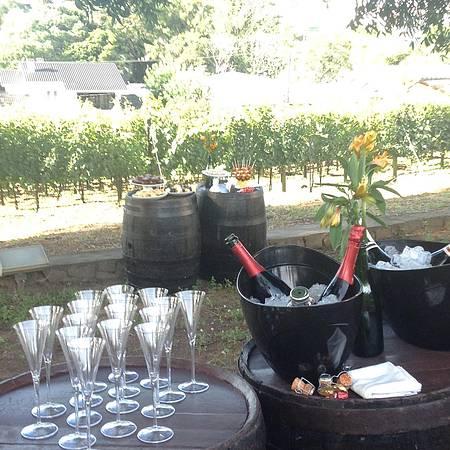 Peterlongo - No outono, brindes no jardim com vista para o vinhedo