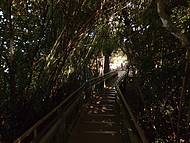 Tunelzinho