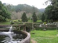 Este Parque É Simplismente Lindo.