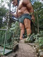 Guardião da Floresta