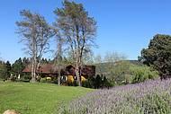 Lindos jardins emolduram o parque