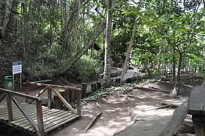 Poço Escuro: Trilhas são as principais atrações da área verde -