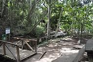 Trilhas são as principais atrações da área verde