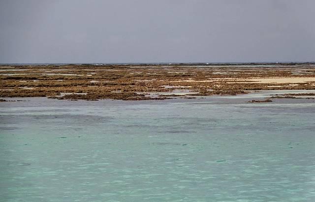 Maré baixa em Maragogi AL