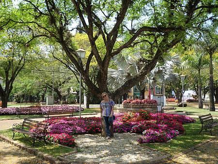 Jardim em frente à Paróquia da cidade - Entre as flores