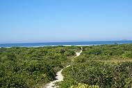 Para chegar à praia é só seguir a trilha