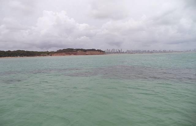 Parte escura: pedras/corais
