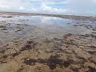 Piscinas Naturais da Praia de Itacimirim