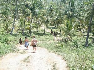 Fazer trilha rumo às praias