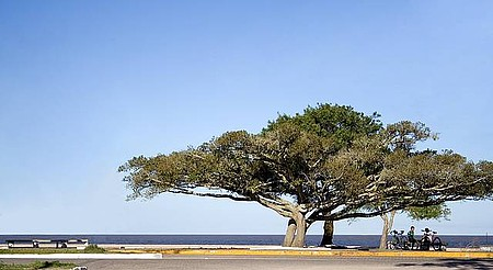 Praia do Laranjal - Recantos perfeitos para relaxar