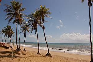Sem rumo: Caminhada perfeita entre o mar e os coqueiros <br>
