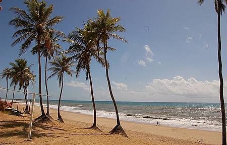 Sem rumo - Caminhada perfeita entre o mar e os coqueiros