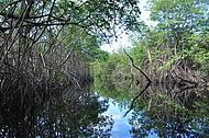 Rio Sagi (tb conhecido como rio espelhado)