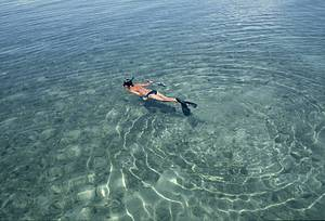 Mergulhar: Mergulho é atividade obrigatória<br>