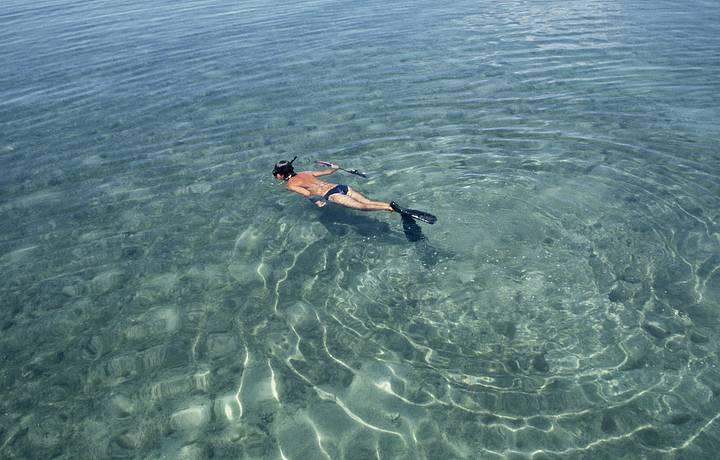 Mergulho é atividade obrigatória