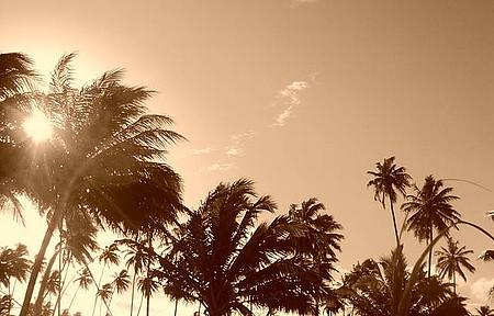 Maria Farinha - Do lado de cá a vista é bonita, a maré é boa de provar