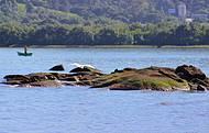 Paisagem com pescador no litoral Norte.