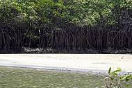 Rio Bocatu