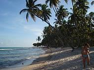 O Paraíso em Pernambuco