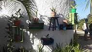 Restaurante Tropicália