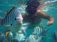 Snorkel nos Parrachos de Maracajau.