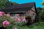 Casinhas típicas e coloridos jardins caracterizam área rural