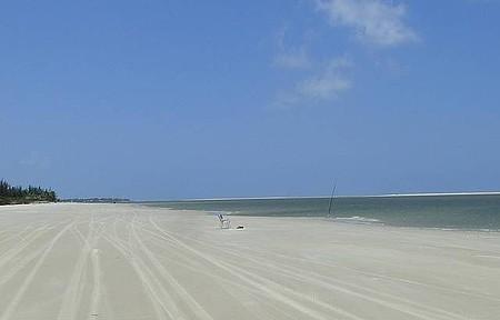 Praia do Saco - Passeio de Bugue
