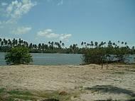 Lagoa de Massagueira