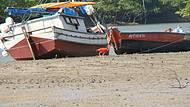 Guará cata seu alimento na Praia