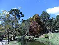 Passeio no Horto Florestal