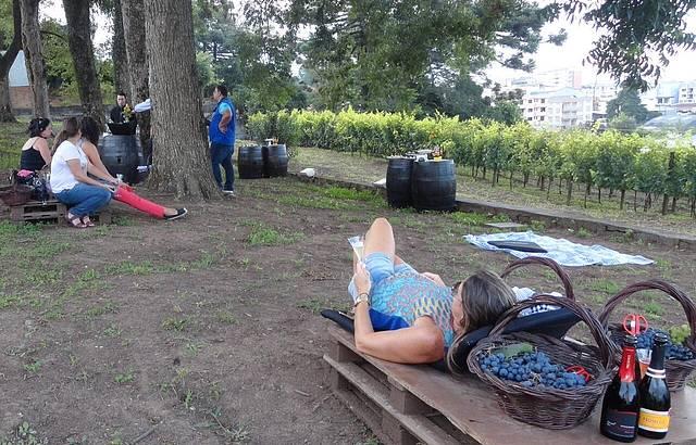 Piquenique de outono: pallets e almofadas garantem relax