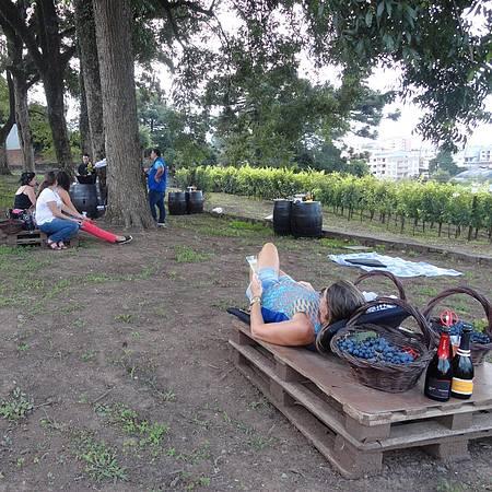 Peterlongo - Piquenique de outono: pallets e almofadas garantem relax